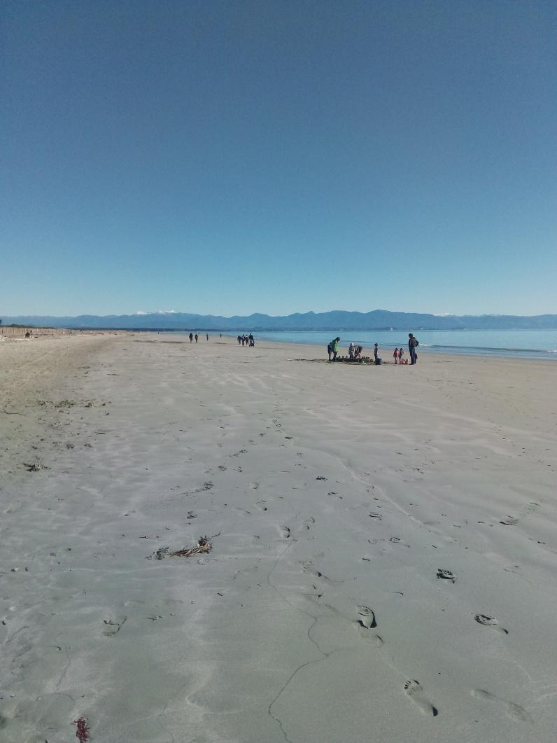 Tahuna Beach. Saturday morning chaos